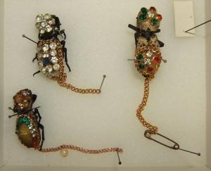 1024px-Zopheridae_jewelry_sjh
