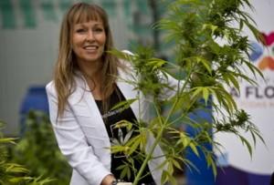 La presidenta de la Fundación Daya, Ana Maria Gazmuri, muestra una planta de cannabis en un laboratorio en Santiago de Chile (AFP)