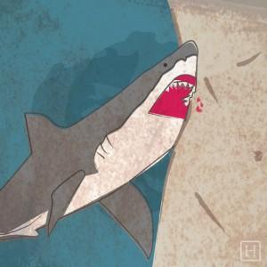 """""""Se siente como un tiburón mordiendo mi estómago"""" – Edu González (vía Facebook)"""