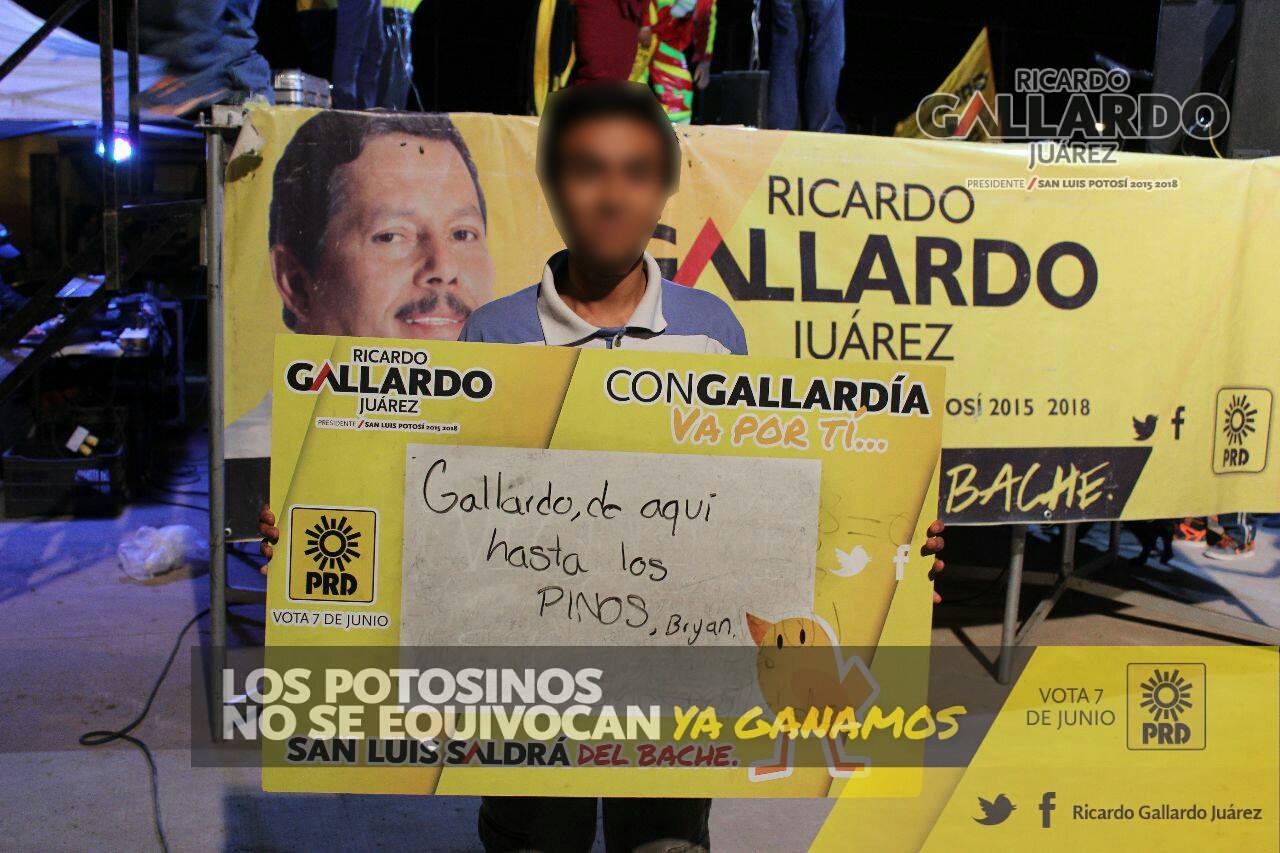 GALLARDO PINOS